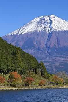 Mt.Fuji - Autumn At Lake Tanuki, Japan