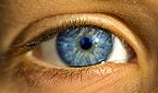 Clear & Bright: Blue, Green, or hazel……you are probably a Clear Spring, Clear Winter or a Light Spring
