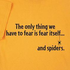 spiders, encouragement, halloween