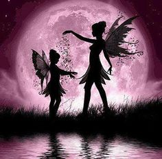 Fairy Night