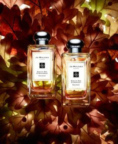 Succumb to the scent of the fabled oak. Infused into two spellbinding scents… Beauty Products Gifts, Fall Scents, Jo Malone, Best Perfume, Makeup Dupes, London, Body Care, Gift Guide, Perfume Bottles
