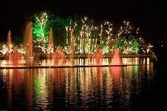 Fonte multimídia do parque do Ibirapuera-São Paulo (foto) ganha luzes, projeções de Natal e muitos sons