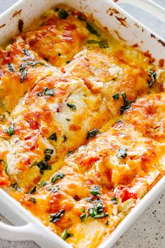 Zucchini Tomato Casserole - Layers of baked Zucchini and Tomatoes coated with a creamy cheesy blend and loaded with flavor! Serve it as a tasty appetizer side dish or a delicious vegetarian dinner. Recetas Zuchinni, Zuchinni Recipes, Vegetable Recipes, Cauliflower Recipes, Zucchini Tomato Casserole, Vegetable Casserole, Cheesy Zucchini Bake, Chicken Tomato Casserole, Vegetarian Casserole
