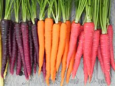 #Carrots ...#Tasty and colorful, it is also a great snack. So, if #lunch is far from ready and you feel a little bit #hungry, just take a few #carrots out of the fridge. Carrots are extremely high in both #Vitamin A and Beta-carotene, which are rarely available in such potent amounts from other #fruits and #vegetables. #Vitamin A is beneficial to eye, cell, and skin health...