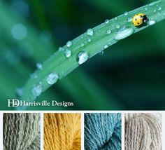 Spring Lady Bug color palette using Harrisville Designs silk & wool yarn: Seamist, Pale Daffodil, Fern, and Linen.
