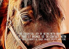 Plan Your Dude Ranch and Guest Ranch Vacations - RanchSeeker Horse Love, Horse Girl, Crazy Horse, Horse Riding Quotes, Riding Horses, Inspirational Horse Quotes, Dude Ranch Vacations, Country Girl Life, Equestrian Quotes