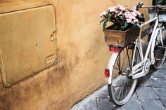 Download this free photo here www.picmelon.com #freestockphoto #freephoto #freebie /// Bicycle with Flowers | picmelon