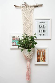 Your place to buy and sell all things handmade Macrame Plant Holder, Macrame Plant Hangers, Plant Holders, Plastic Bowls, Cotton Rope, Driftwood, My Etsy Shop, Lights, Cream