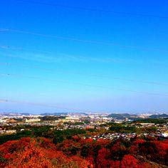 ある秋の風景