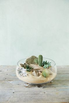 Love Natural Decor? (But Need Low Maintenance?) Build Your Own Succulent Terrarium Garden