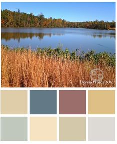 Sometimes the best #color combos are the ones that you don't see at first glance.  http://decoratingbydonna.com/2012/10/21/fall-color-palettes/