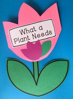 """Plant Center Activity for Literacy Spring Writing for Firsties. """"What a Plant Needs"""" fold out booklet.Engaging and fun writing activities for the spring season. Fun Writing Activities, Craft Activities For Kids, Science Activities, Spring School, School Fun, School Ideas, 1st Grade Science, Elementary Science, Science Lessons"""