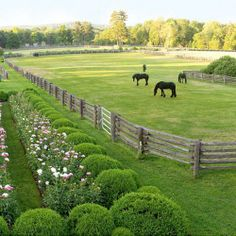 Pastures are the most important part of the perfect Horse Home. The Happy Horse is a free Horse horse ranch life Dream Stables, Dream Barn, Horse Stables, Horse Farms, Horse Paddock, Horse Arena, Horse Horse, Future Farms, Horse Ranch