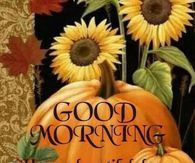 Good Morning Have a Beautiful Day pumpkin greetings good morning good morning greeting good morning quote good morning poem good morning blessings good morning friends and family good morning coffee autumn good morning fall good morning Good Morning Today, Good Morning Coffee, Good Morning Picture, Good Morning Sunshine, Good Morning Greetings, Morning Pictures, Good Morning Wishes, Morning Messages, Good Morning Images