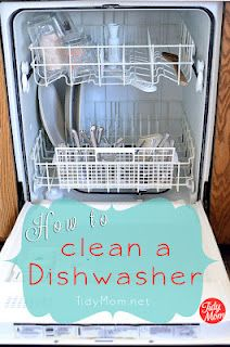 How to clean everything from the dishwasher to ceiling fans.