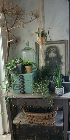 I have a demijohn basket old photo plants trunk dried material. Can I put i - I have a demijohn basket old photo plants trunk dried material. Can I put i - Vibeke Design, Deco Boheme, Deco Floral, Asian Garden, Romantic Homes, Bohemian Decor, Bohemian Style, Bohemian House, Bohemian Gypsy