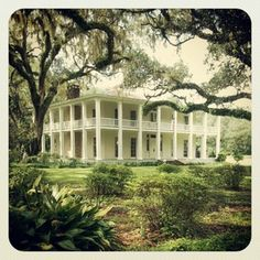 Eden Garden State Park, Santa Rosa Beach Florida, Wesley House. Love taking my dogs here to run around.