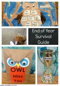 End of the School Year Survival Guide