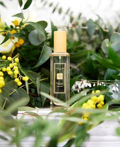 Discover our radiant new Blossom, Frangipani Flower. Bottled sunshine with a sweet, airy lightness. Shop the new fragrance. Photography Branding, Creative Photography, Fashion Photography, Product Photography, Ad Photography, Perfume Packaging, Beauty Shots, Natural Cosmetics, Photography Backdrops