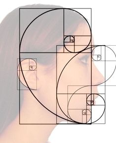 Golden Ratio and Fibonacci spiral in the human face Golden Ratio Huma . Fibonacci Sequence In Nature, Fibonacci Golden Ratio, Fibonacci Number, Divine Proportion, The Golden Mean, Flower Of Life, Art Techniques, Art Tutorials, Art Lessons