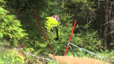 Vital RAW - Leogang World Cup Ripping #MTB #ExtremeSports