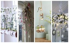 Driftwood Planters, Succulents In Containers, Ladder Decor, Wreaths, Home Decor, Native Plants, Exotic Plants, Easter Activities, Decorations