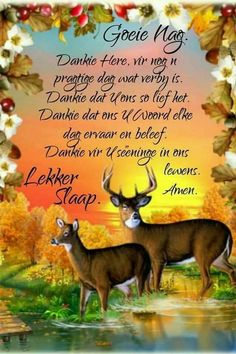 Evening Quotes, Afrikaanse Quotes, Good Night Blessings, Goeie Nag, Angel Prayers, Sleep Tight, Amen, Verses, Poems