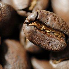Unnützes Kaffeewissen: 1614 brachen die Niederländer zu einer Forschungsreise nach Aden in Jemen auf und brachten widerrechtlich ein Kaffeepflänzchen in ihre Gewalt. Es gelang ihnen, in Holland Kaffeeschößlinge zu ziehen und diese ab 1699 auf der Insel Java anzubauen. Das arabische Monopol war gebrochen.