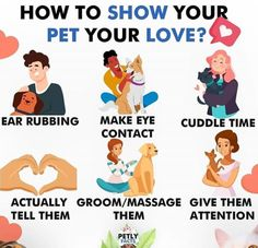 Online Dog Training, Dog Training Courses, Best Dog Training, Brain Training, Boxer Dogs Facts, Dog Facts, Dog Health Tips, Pet Health, Dog Training Treats