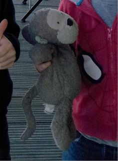 Lost on 04 Jul. 2016 @ nr12 8rx. Much loved cuddly monkey lost on Mon 4th July, either in Wroxham, Norfolk (probably in the Broad Tours car park) or at Wild Duck Haven site at Belton, nr Great Yarmouth. One very sad 6 year old is ... Visit: https://whiteboomerang.com/lostteddy/msg/y9kkz3 (Posted by Helen on 06 Jul. 2016)