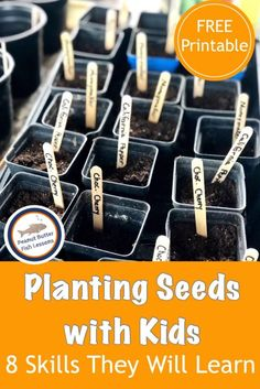 Planting Seeds with Kids: 8 Skills They Will Learn – peanut butter fish lessons - Modern History Of Agriculture, Plant Classification, Planting For Kids, Starting Seeds Indoors, Pepper Plants, Creative Curriculum, Seed Packets, Seed Starting, Lessons For Kids