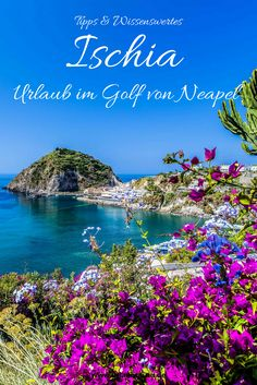 Neben der traumhaften Insel Capri und dem kunterbunten Inselchen Procida gehört auch Ischia zu den beliebtesten Ausflugs- und Urlaubszielen im Golf von Neapel. Lest in meinen Ischia Tipps alles über diese wunderbare Insel und über Ausflugsziele im Golf von Neapel.