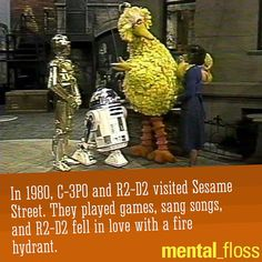 R2-D2 fell in love with a fire hydrant on Sesame Street.  Why?  mental_floss