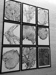 Love these! Put a bunch in a row, one done by each kiddie. Art Mural, Wall Art, Fathers Day Art, Woodcut Art, Framed Prints, Art Prints, Nature Prints, Art Nature, Tree Rings