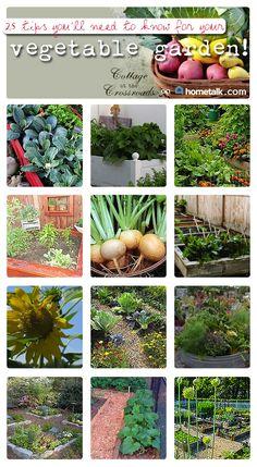 25 Vegetable Garden Tips from Hometalk