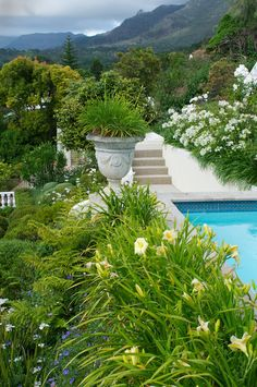 A once steeply sloping site overlooking False Bay and the Hottentots Holland Mountains has been transformed into a manicured, terraced garden that makes as much Swimming Pool Designs, Swimming Pools, Garden Types, Contemporary Garden, Public Garden, Mountain Homes, Terrace Garden, Water Features, Outdoor Gardens