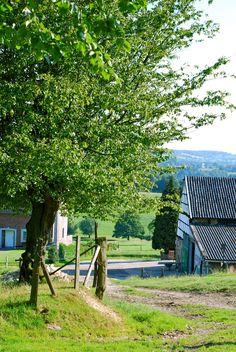 E-mail - john van den heuvel - Outlook Farm Day, Water Tower, Horse Farms, Farm Gardens, Country Life, Amsterdam, Beautiful Landscapes, Belgium, Netherlands