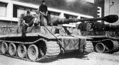 Tiger of the Leibstandarte in Corregio in Italy