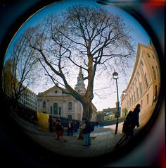 Camera: Diana. Lens: Fisheye