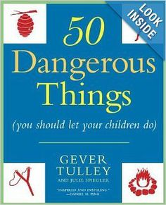 Fun Holiday Gift idea - 50 Dangerous Things you should let your children do.