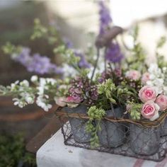 French garden flowers