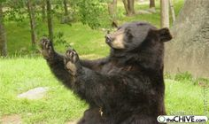 How about no-bear before he was famous,