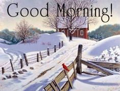 A to Z Status: Good Morning Images, Best Morning Image, Latest Morning HD Good Morning Winter, Good Morning Christmas, Morning Morning, Morning Wish, Christmas Holidays, Good Morning Quotes For Him, Good Morning Picture, Morning Pictures, Good Morning Images