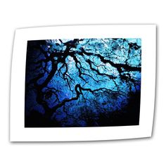 Japanese Ice Tree by John Black Photographic Print on Canvas