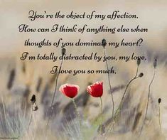 Romantic Good Morning Love Text Messages For Him [ Best Collection ] Good Morning Love Text, Romantic Good Morning Messages, Good Night Love Quotes, Simple Love Quotes, Good Morning For Him, Good Morning Quotes For Him, Love Quotes For Him Romantic, I Love You Quotes For Him, Good Morning Texts