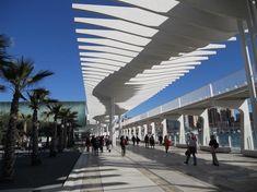 Malaga, Palmeral de las Sorpresas