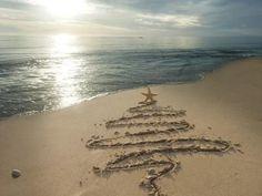 Sea Winter Solstice Tree  -reminds me of my best friend in Michigan!