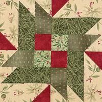 double star quiltmakers 100 blocks vol 1
