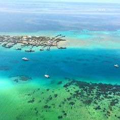 Abrolhos Islands in Western Australia! You'll find this cluster of 122 islands about 60 kilometres west of Geraldton - Photo by @courtneysomerville