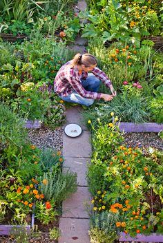 Gebruik je de voortuin nauwelijks? Geef hem dan een nieuwe boost door er een groenten-, kruiden- of fruittuin van te maken. Backyard Vegetable Gardens, Garden Compost, Vegetable Garden Design, Veg Garden, Edible Garden, Outdoor Gardens, Gardening, Garden Paving, Potager Garden